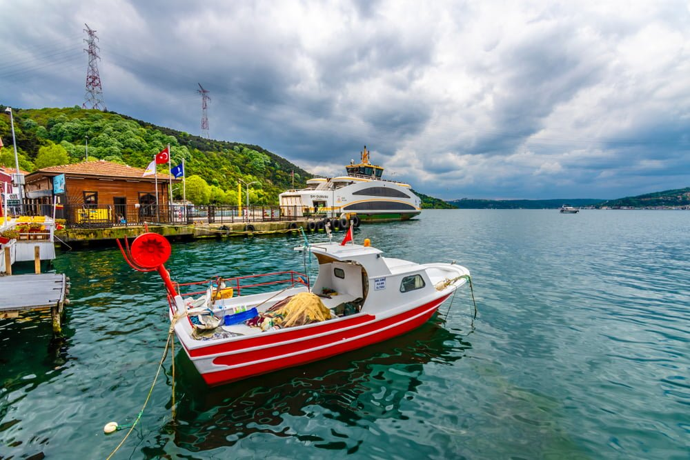 ST-08 BOSPHORUS AND BLACK SEA TOUR HALF DAY WITH LUNCH 35€/PP